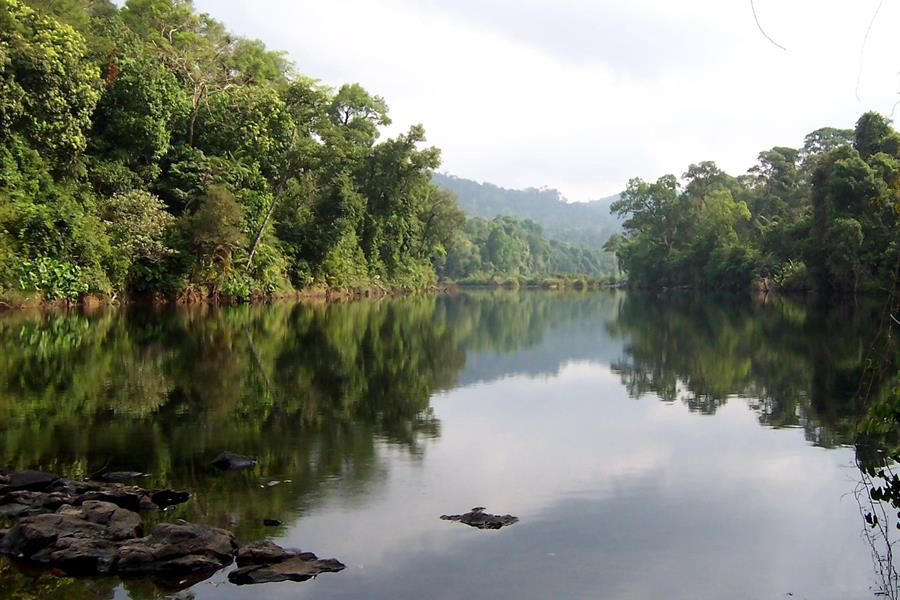 Areng River, Cardamom Mountains, Cambodia.