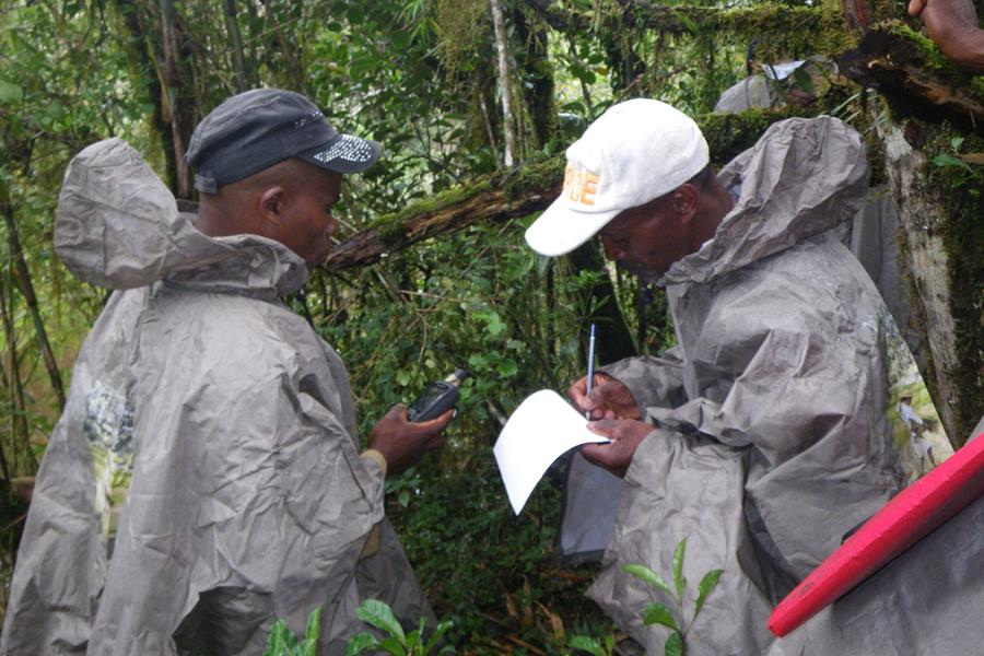 Conservationists at work in eastern Madagascar