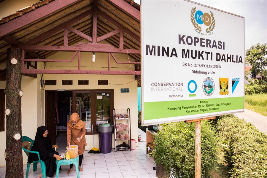 Mina Mukti Dahlia is the first cooperative in Cihanyawar Village. The cooperatives are built with support from CI Indonesia as a part of community development.