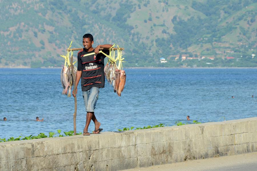 Man selling fish on the coastal road in Dili, Timor-Leste