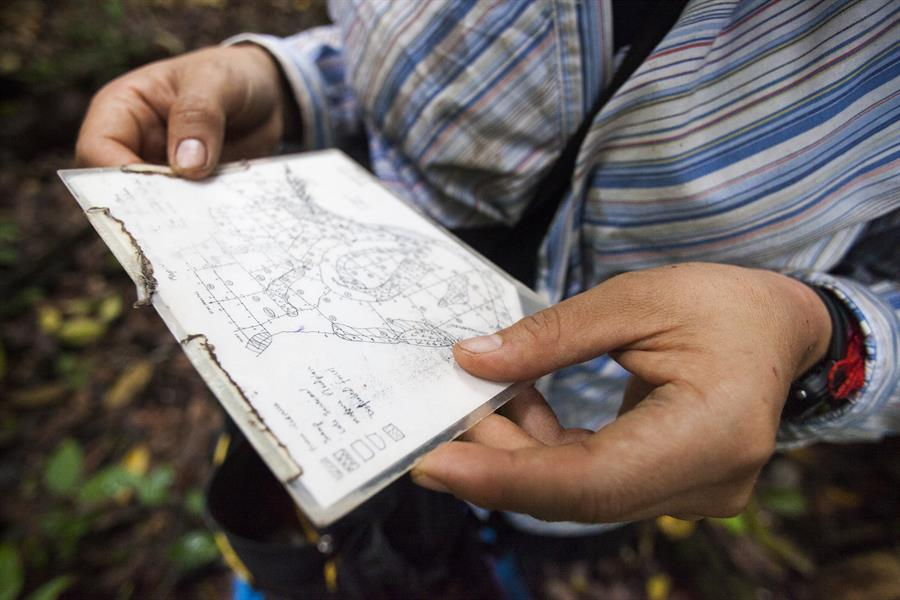 A researcher checks a map of Cocha Cashu plots