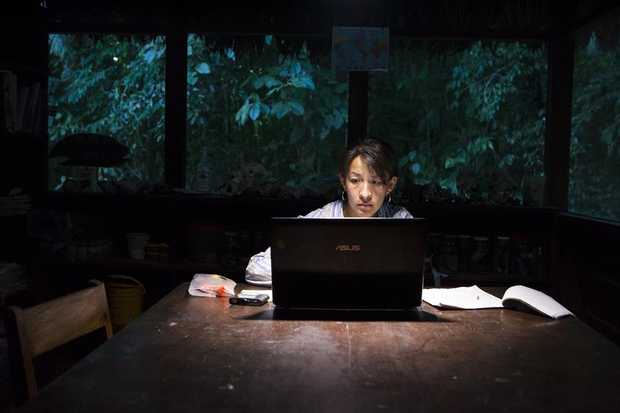 A researcher enters data at a workstation in Cocha Cashu, Peru.