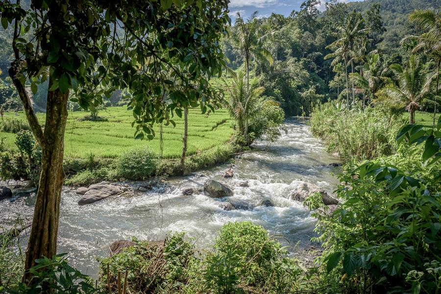 A river flows through the Batang Gadis watershed in Mandailing Natal, North Sumatra.