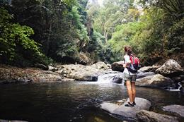 Woman hiking in the rainforest in Thailand