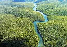 Aerial photo of the Amazon River