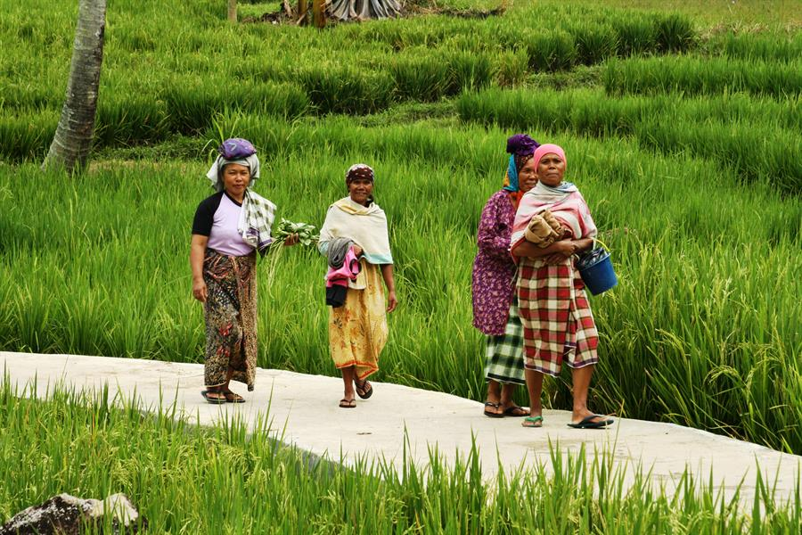 Women in Sumatra.