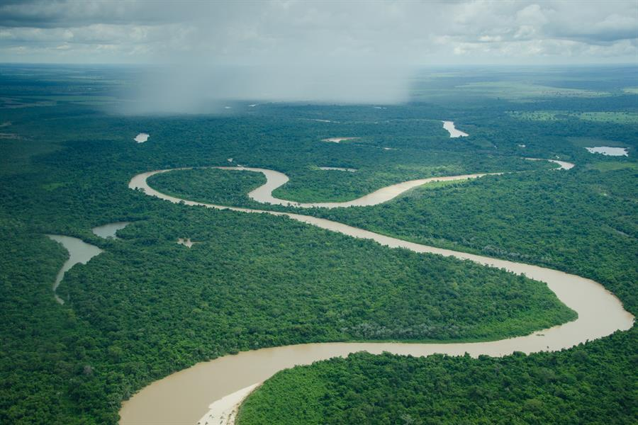 Aerial view of Xingu National Park