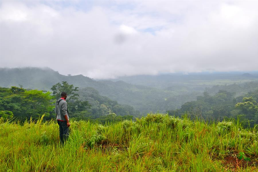 Overlooking the East NImba Nature Reserve