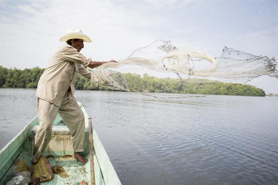Man throws fishing net from a canoe in Mexico