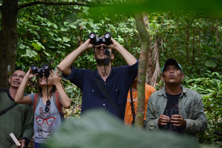 Ecotourism activities initiated by the Sampiri Information Center group invite tourists to explore the forest while studying and staying in the forest.