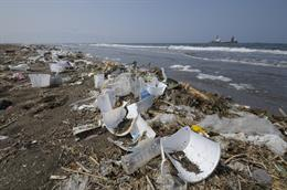 OCEAN POLLUTION: 11 FACTS YOU NEED TO KNOW