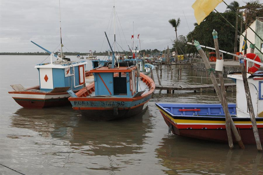 Fishing boats docked in Brazil