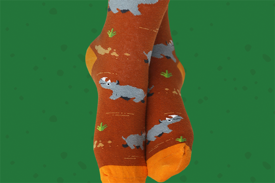 Socks from The Dodo and Sock Club