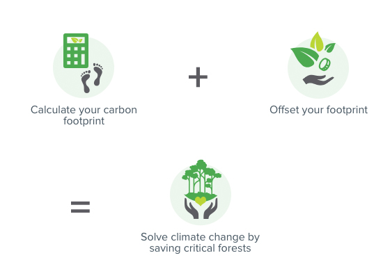 Carbon offset graphic