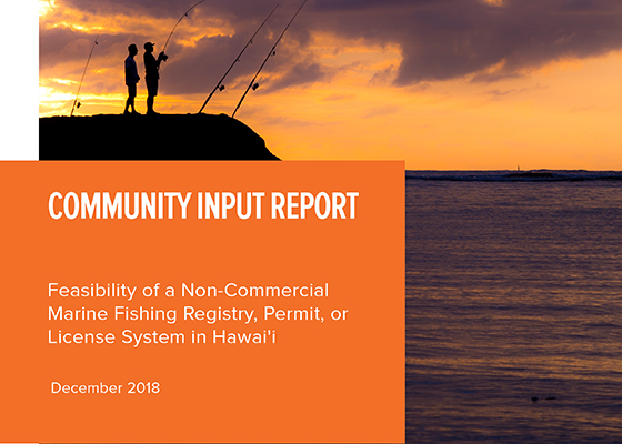 Community_Input_Report_1.7.2019_cover